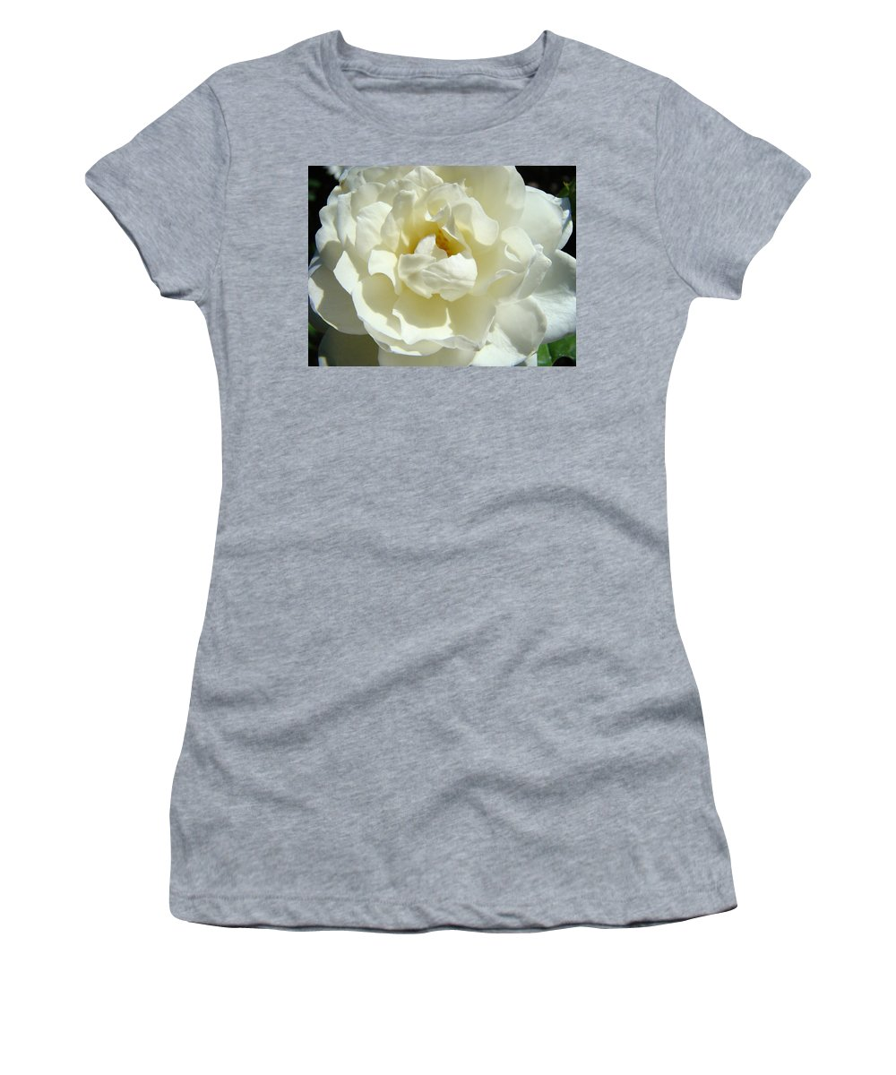 Rose Women's T-Shirt featuring the photograph White Rose Art Prints Summer Sunlit Roses Baslee Troutman by Baslee Troutman