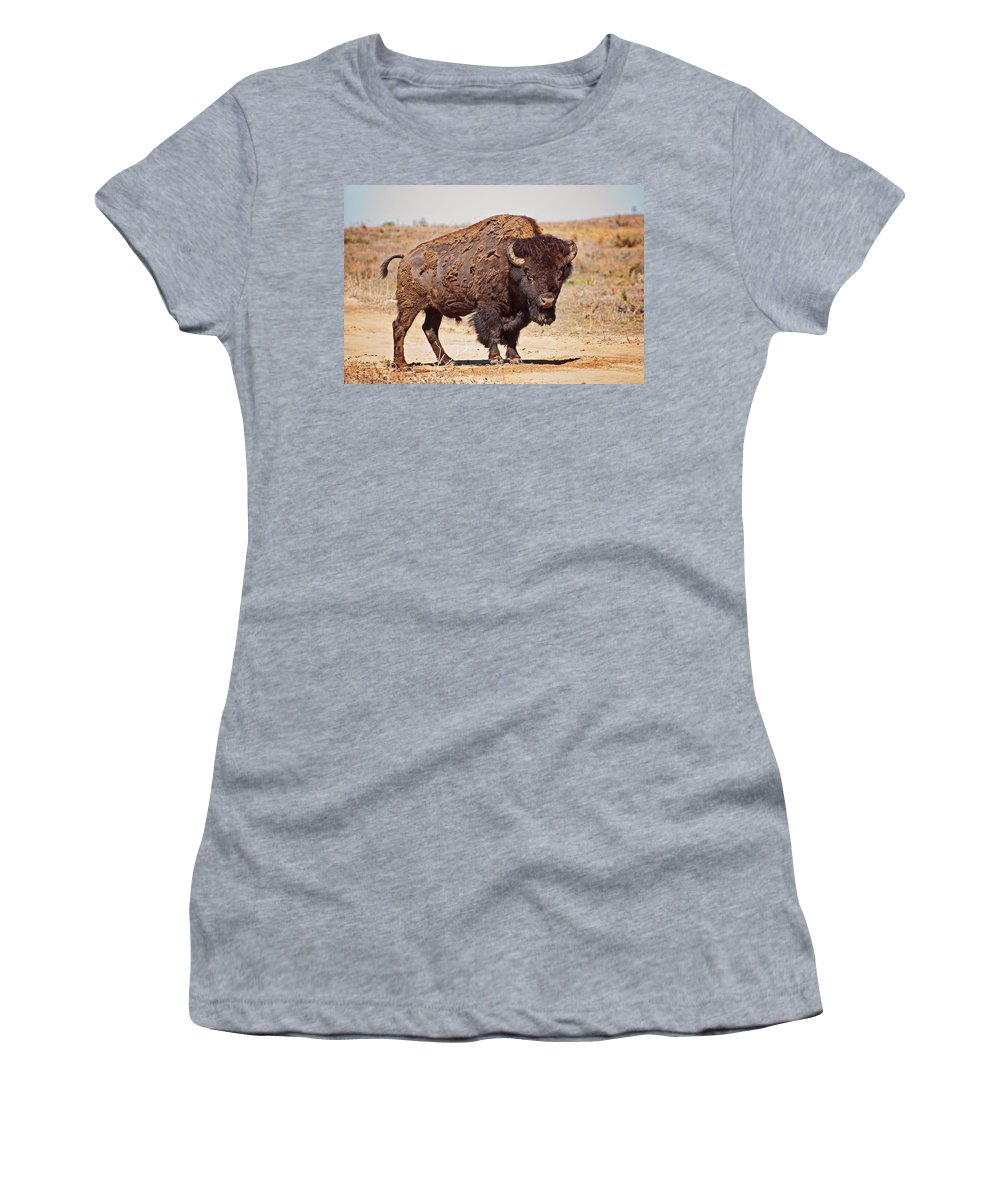 Wild Women's T-Shirt featuring the photograph Wild Bison by Donna Doherty