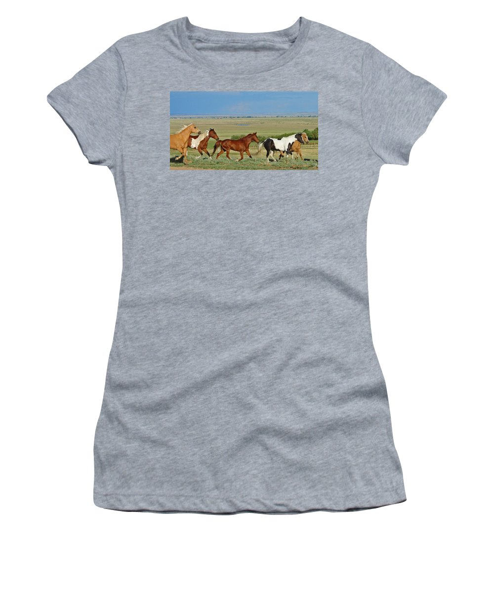 Herd Women's T-Shirt (Athletic Fit) featuring the photograph Wild Horses Wyoming by Heather Coen