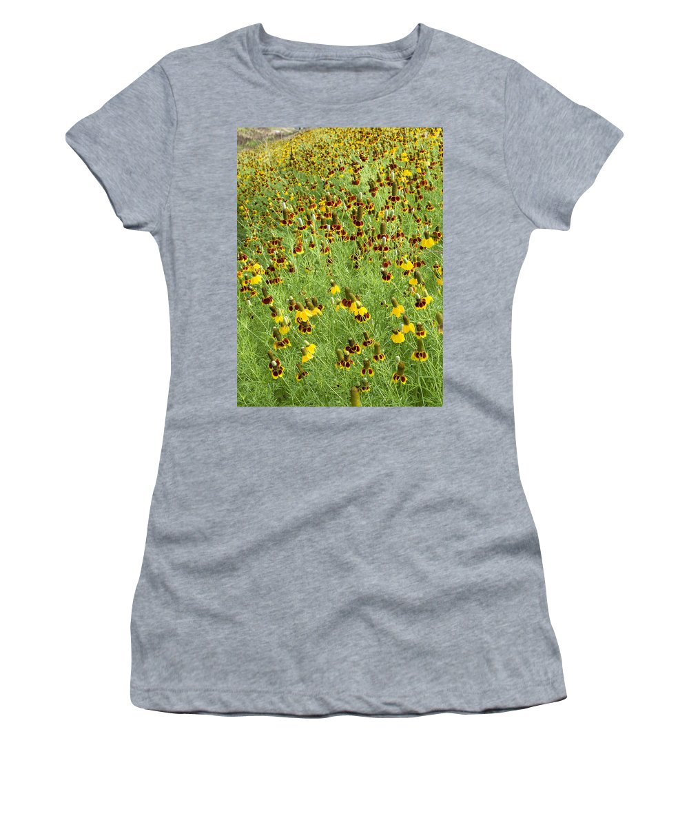 Wildflower Women's T-Shirt (Athletic Fit) featuring the photograph Wildflowers One by Stephen Anderson