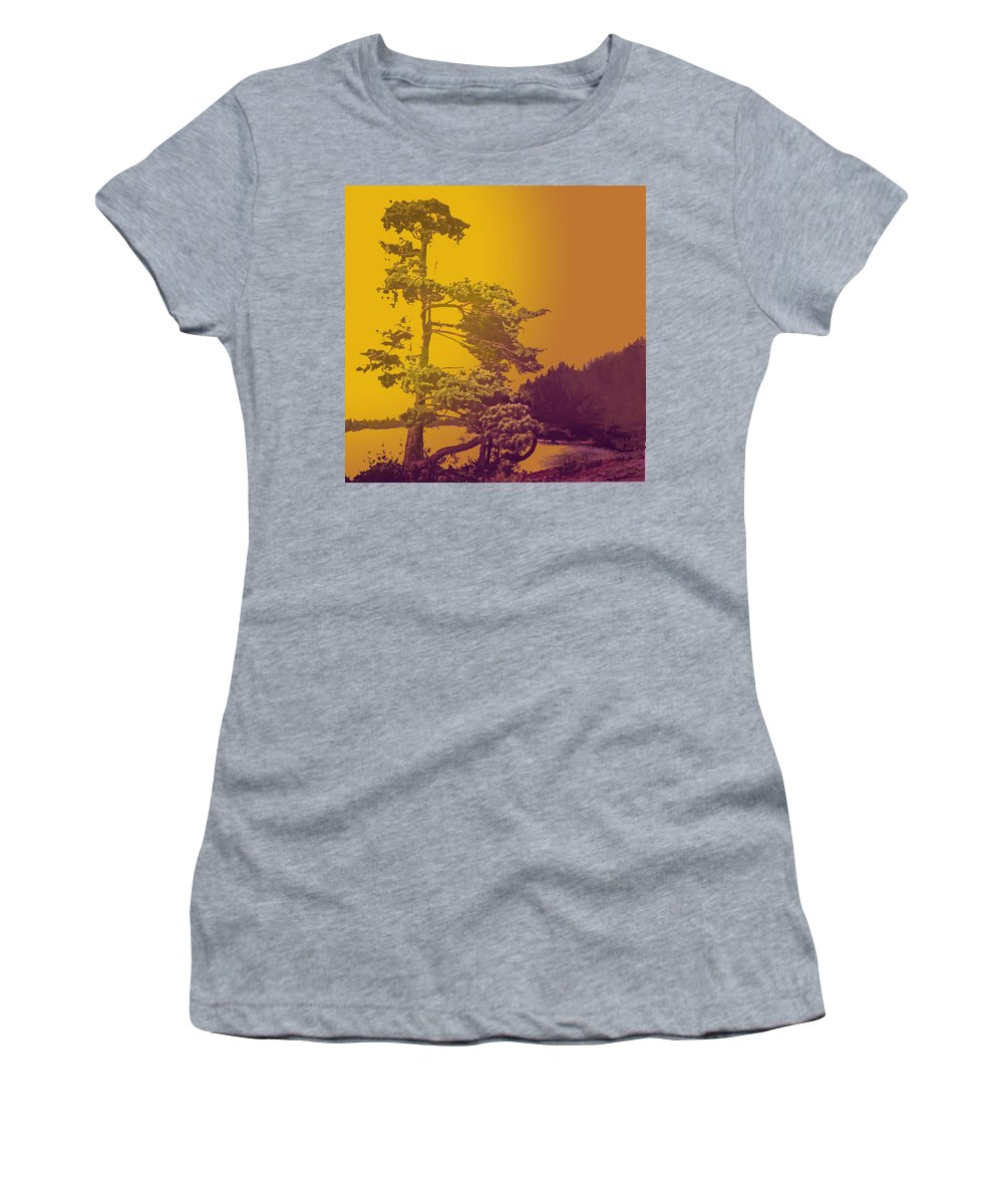Pine Women's T-Shirt (Athletic Fit) featuring the photograph Windblown At Twilight by Ian MacDonald