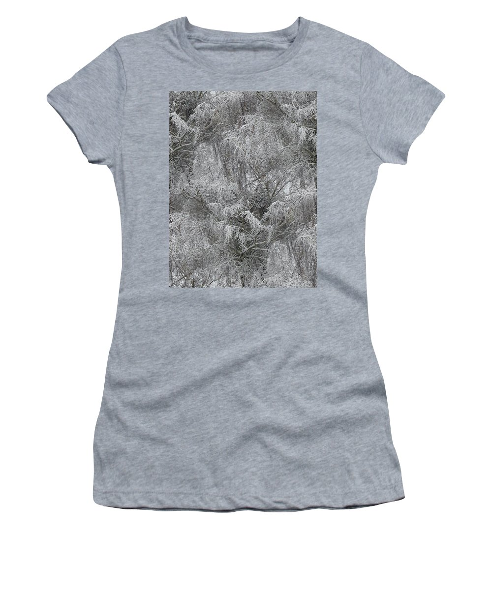 Winter Women's T-Shirt (Athletic Fit) featuring the photograph Winter Trees by Tim Allen
