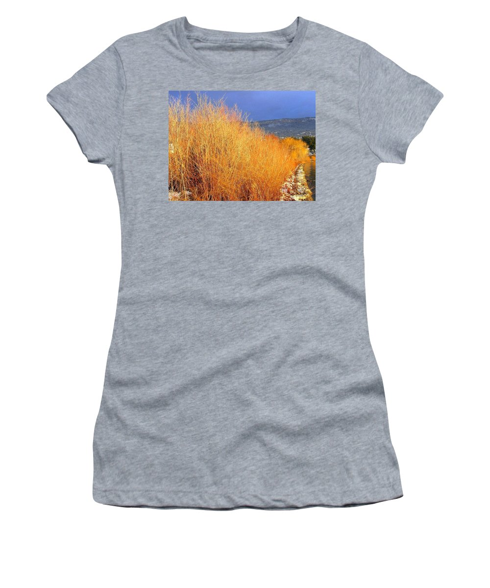 Willows Women's T-Shirt (Athletic Fit) featuring the photograph Winter Willows by Will Borden