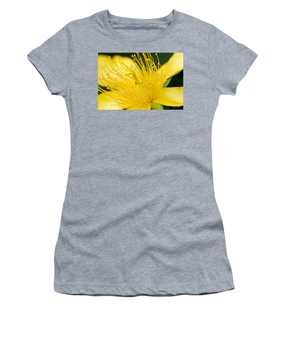 Prairie Flower Women's T-Shirt (Athletic Fit) featuring the photograph Yellow Prairie Flower by Larry Ricker