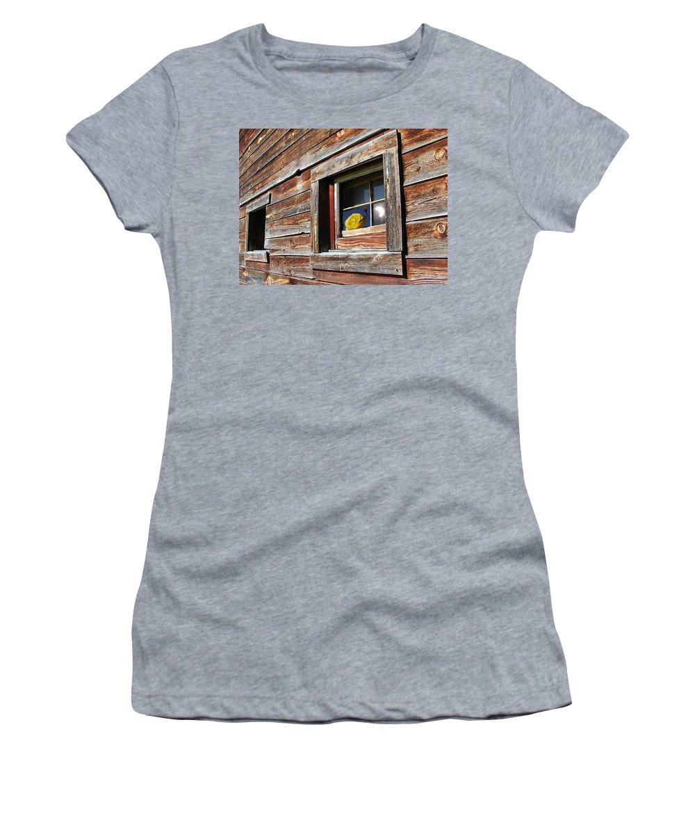 Barn Women's T-Shirt featuring the digital art Yellow Rose Eclipse by Tim Allen