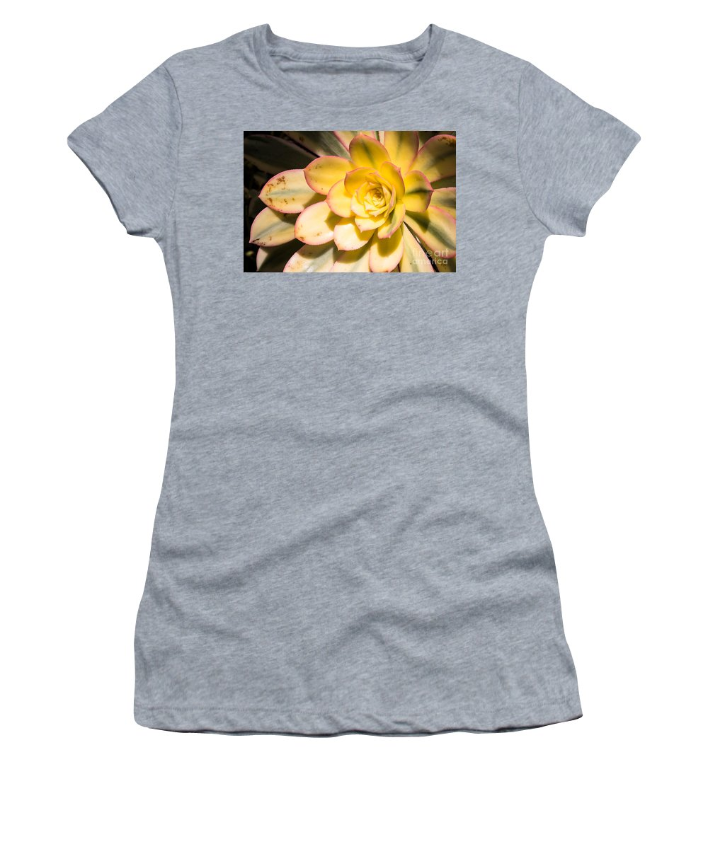 Yellow Women's T-Shirt featuring the photograph Yellow Succulent by Ava Peterson