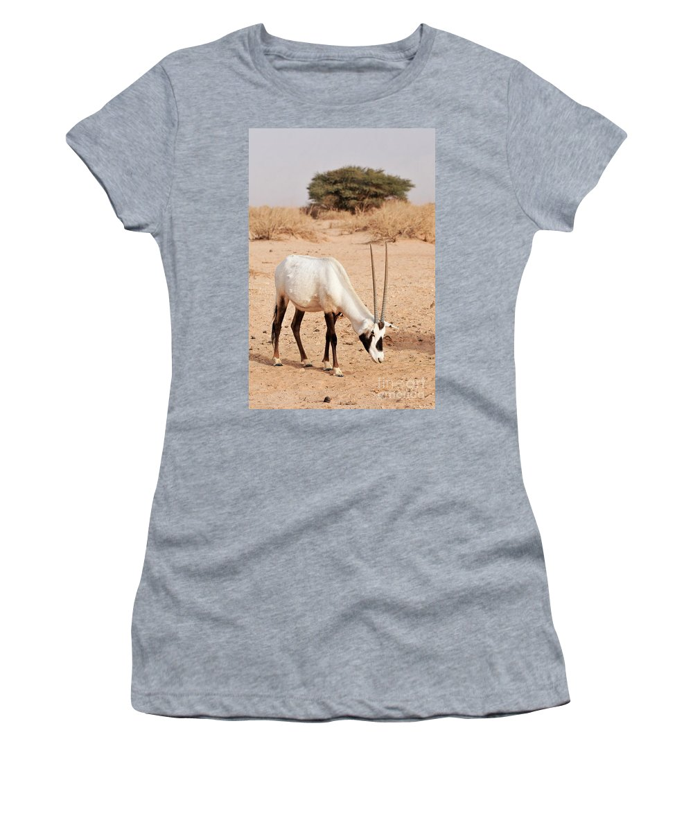 Wildlife Women's T-Shirt (Athletic Fit) featuring the photograph Yotvata Hai-bar Reserve by Shay Levy