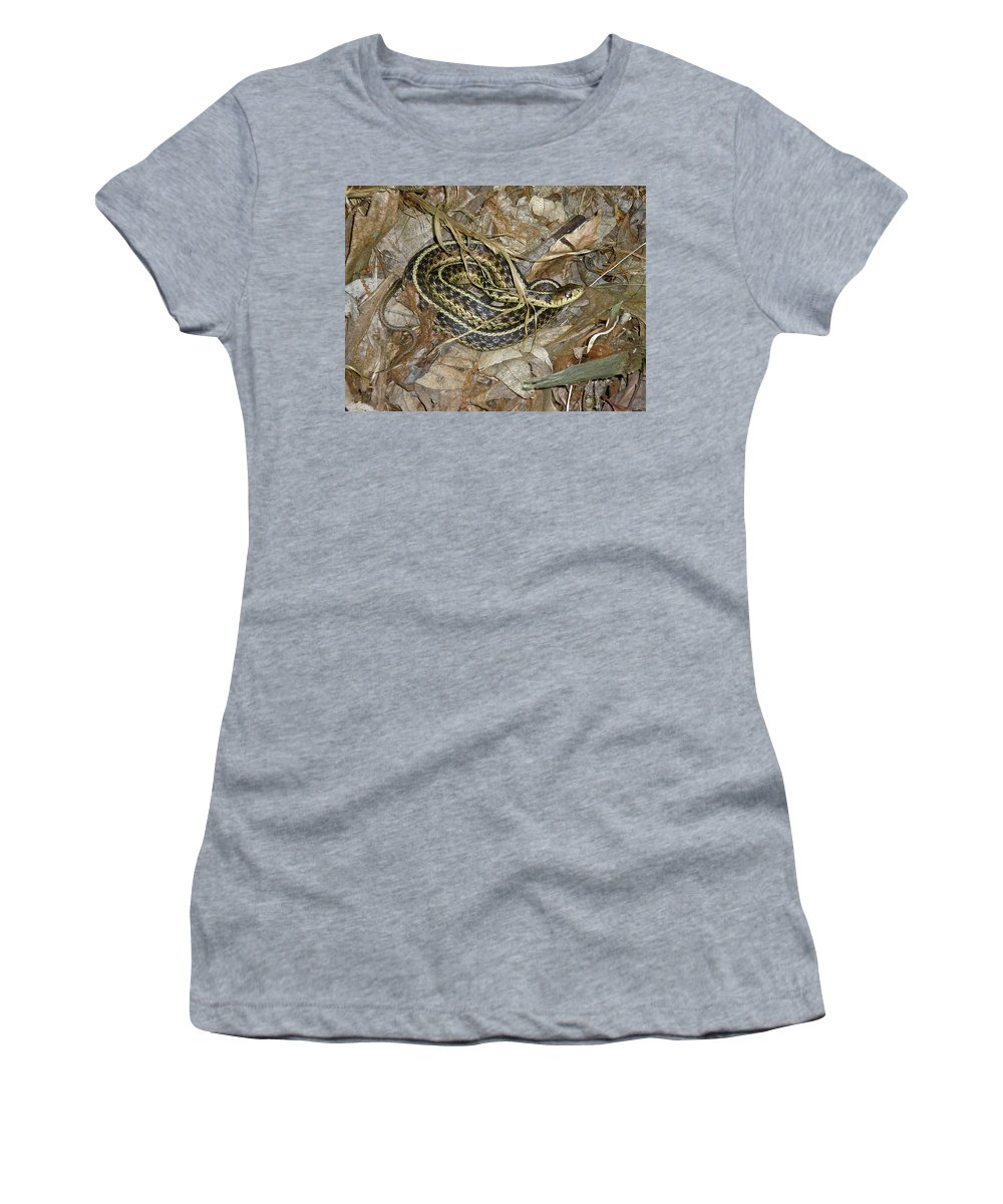 Snake Women's T-Shirt (Athletic Fit) featuring the photograph Young Eastern Garter Snake - Thamnophis Sirtalis by Mother Nature