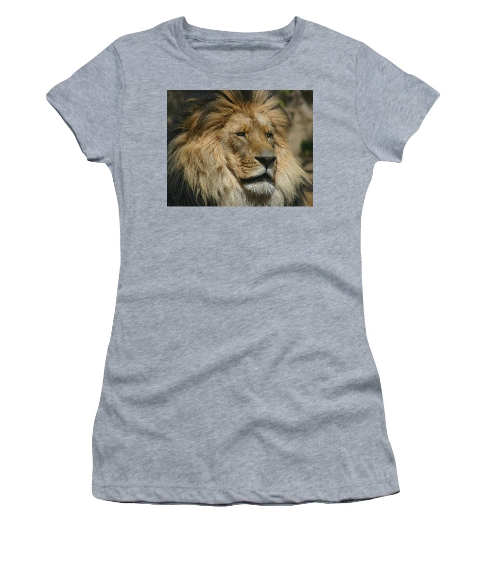 Lion Women's T-Shirt (Athletic Fit) featuring the photograph Your Majesty by Anthony Jones