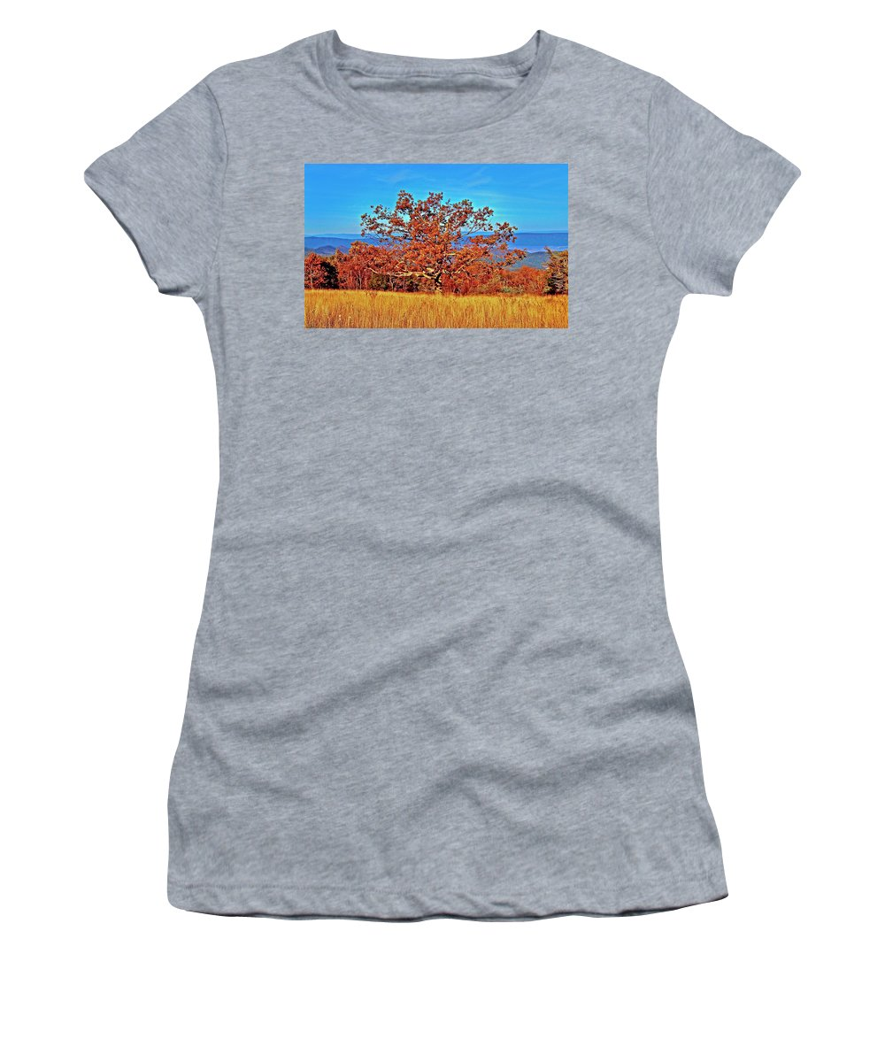 Skyline Drive Women's T-Shirt featuring the photograph Lone Mountain Tree Skyline Drive by The James Roney Collection