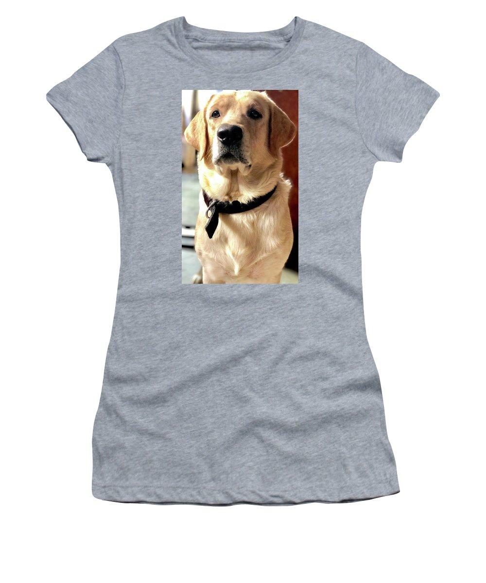 Labrador Dog Women's T-Shirts