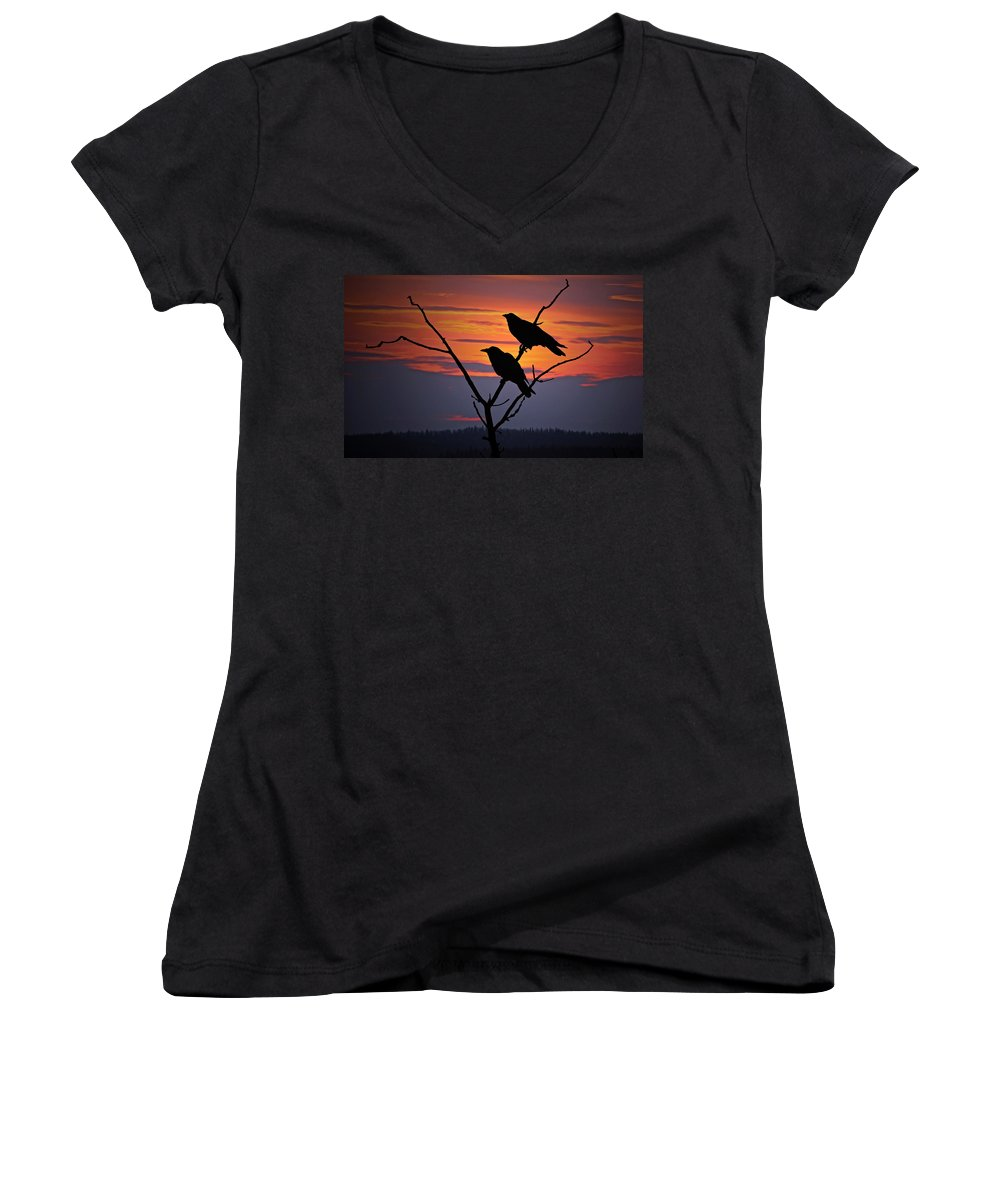 Raven Women's V-Neck T-Shirt featuring the photograph 2 Ravens by Ron Day
