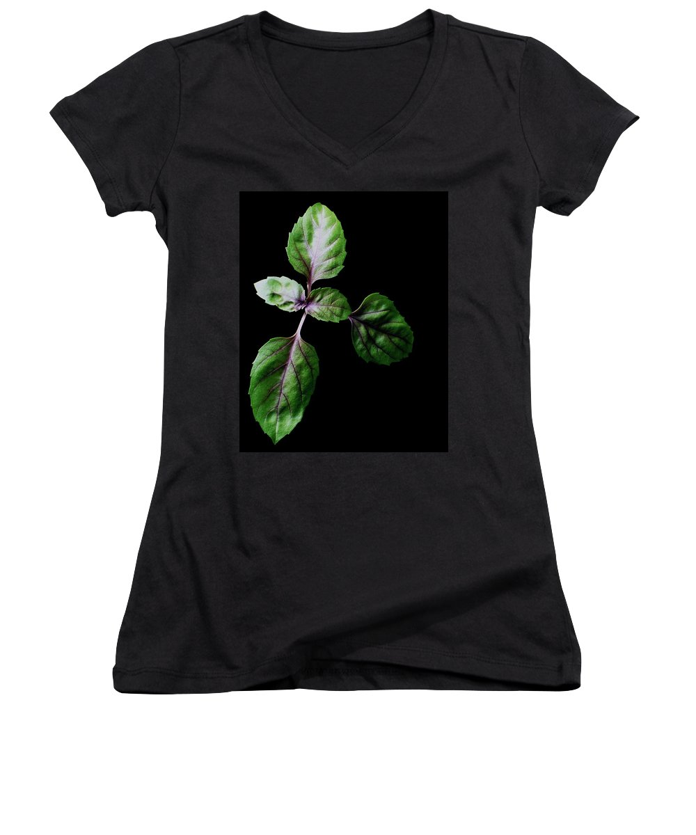 Herbs Women's V-Neck featuring the photograph A Sprig Of Basil by Romulo Yanes