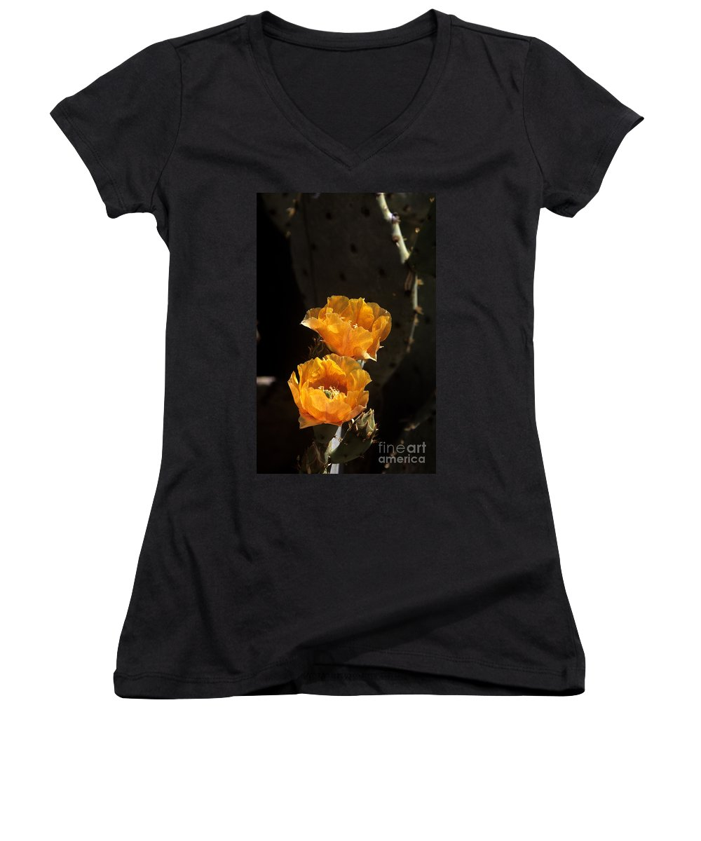Cactus Women's V-Neck T-Shirt featuring the photograph Apricot Blossoms by Kathy McClure