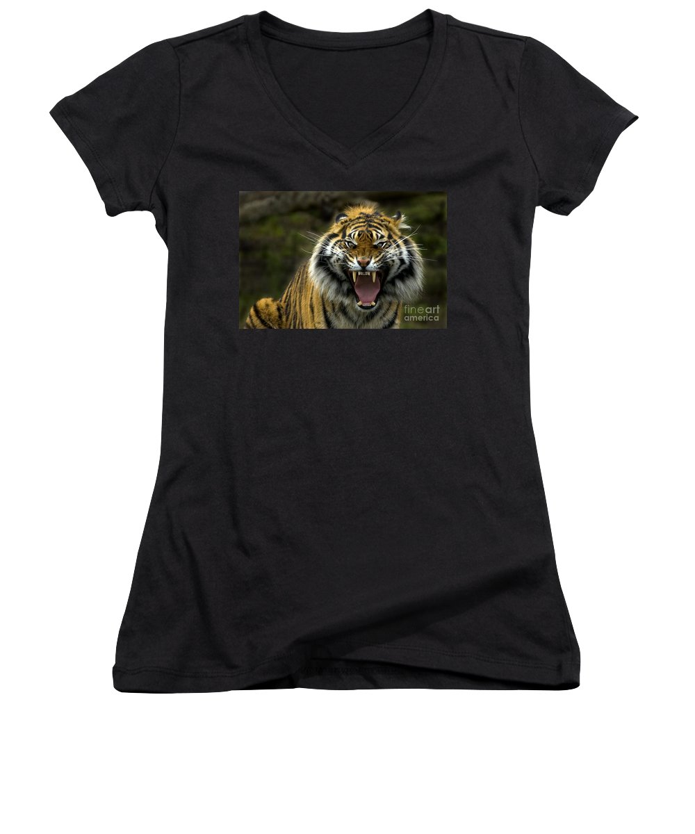 Tiger Women's V-Neck (Athletic Fit) featuring the photograph Eyes Of The Tiger by Mike Dawson