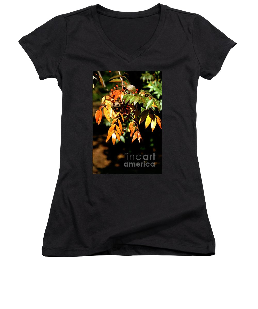 Fall Color Women's V-Neck T-Shirt featuring the photograph Fall Leaves by Kathy McClure