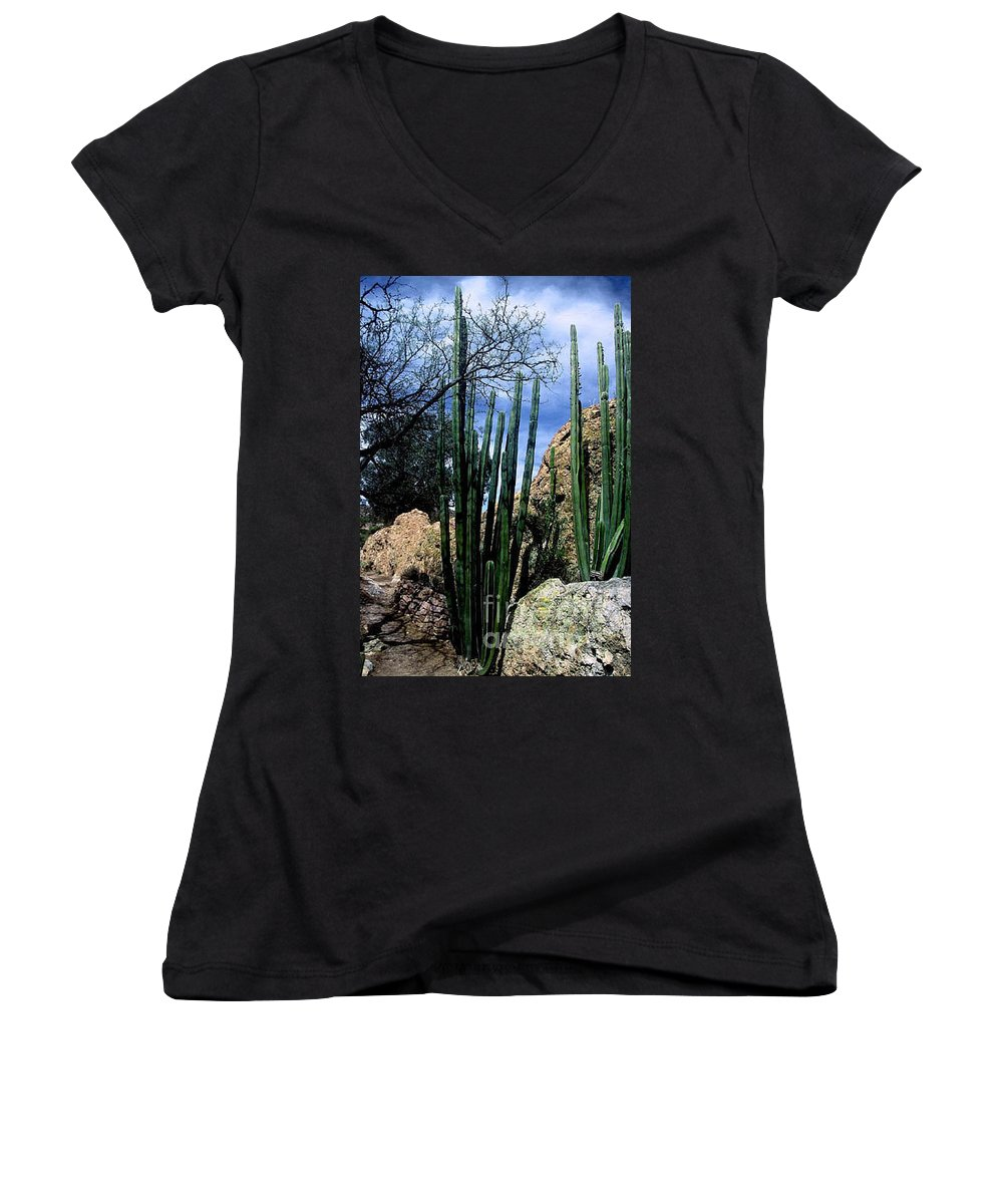 Cactus Women's V-Neck T-Shirt featuring the photograph Organ Pipe by Kathy McClure
