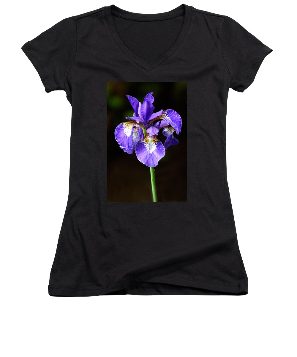 3scape Photos Women's V-Neck T-Shirt featuring the photograph Purple Iris by Adam Romanowicz