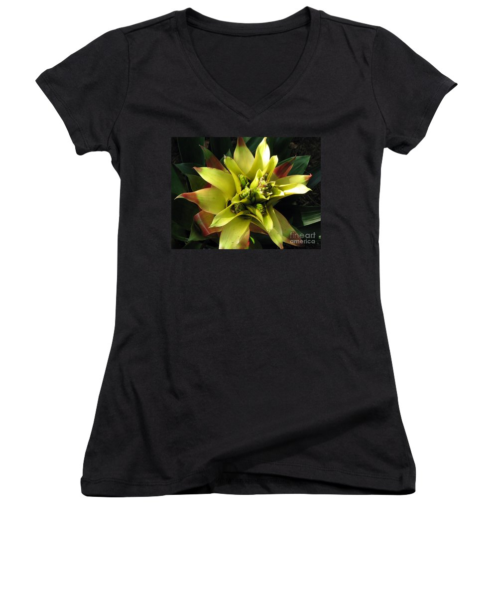 Tropical Women's V-Neck T-Shirt featuring the photograph Tropical by Amanda Barcon