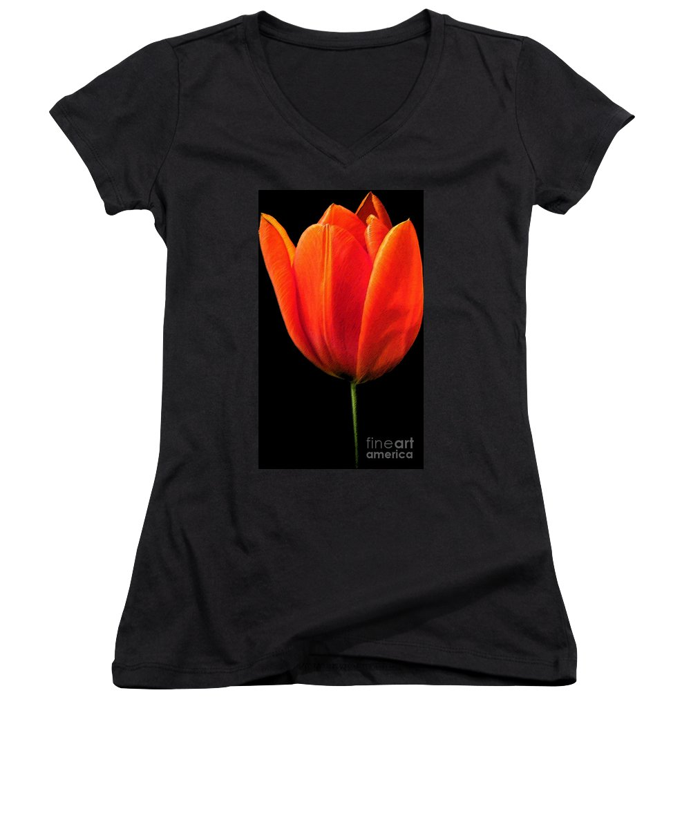 Tulips Women's V-Neck T-Shirt featuring the photograph Tulip by Amanda Barcon