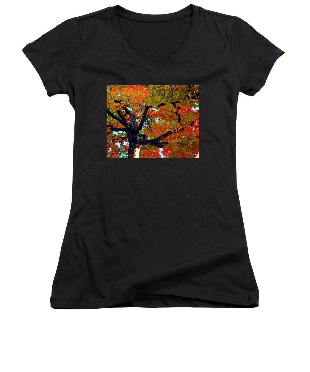 Fall Women's V-Neck T-Shirt featuring the photograph Autumn Tree by Steve Karol