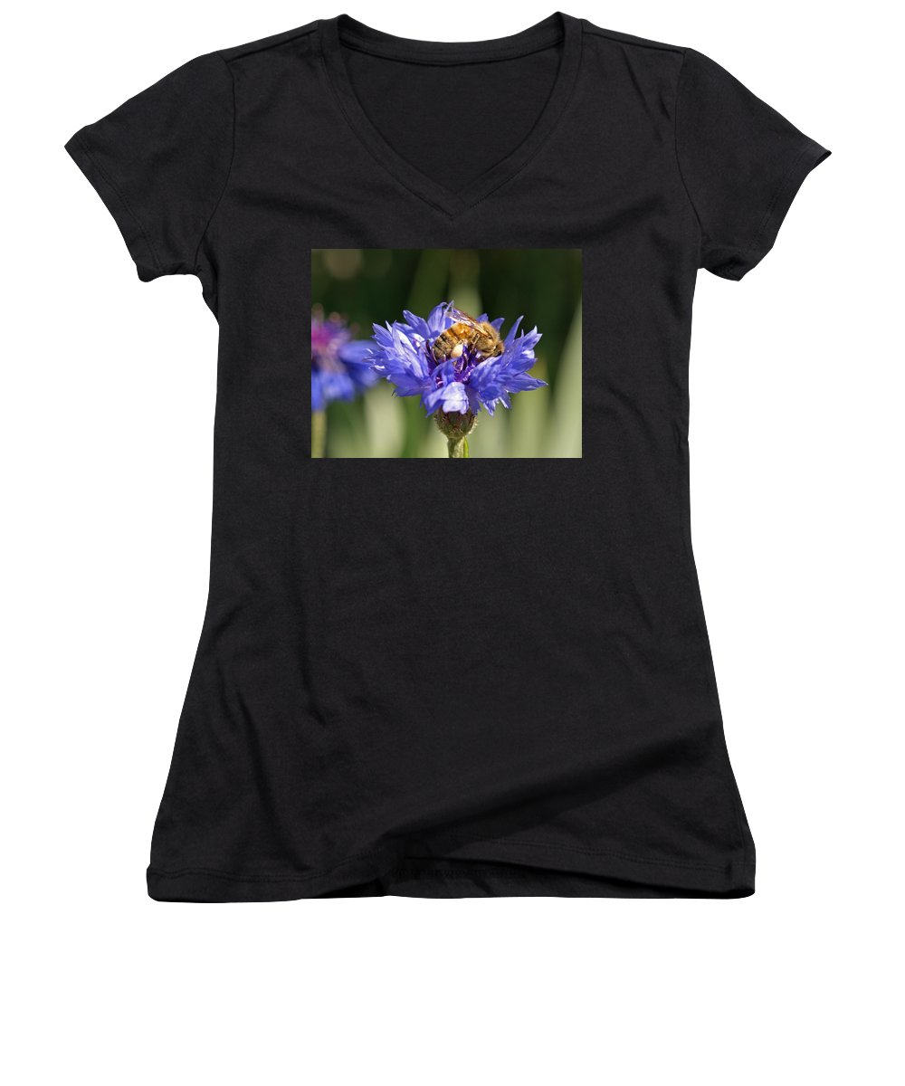 Bee. Flower Women's V-Neck T-Shirt featuring the photograph Bachelor Button And Bee by Heather Coen