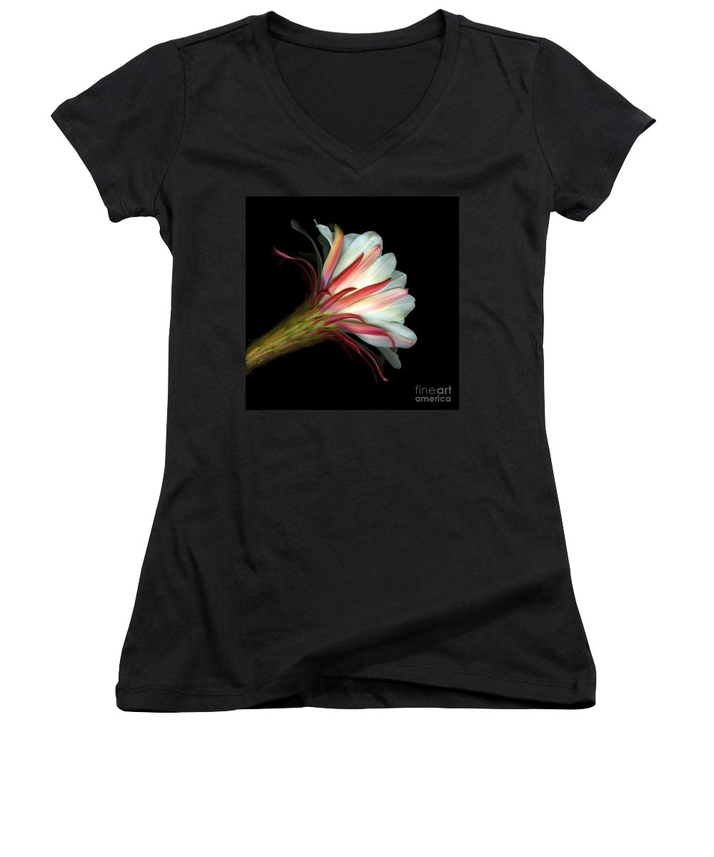 Scanart Women's V-Neck (Athletic Fit) featuring the photograph Cactus Flower by Christian Slanec