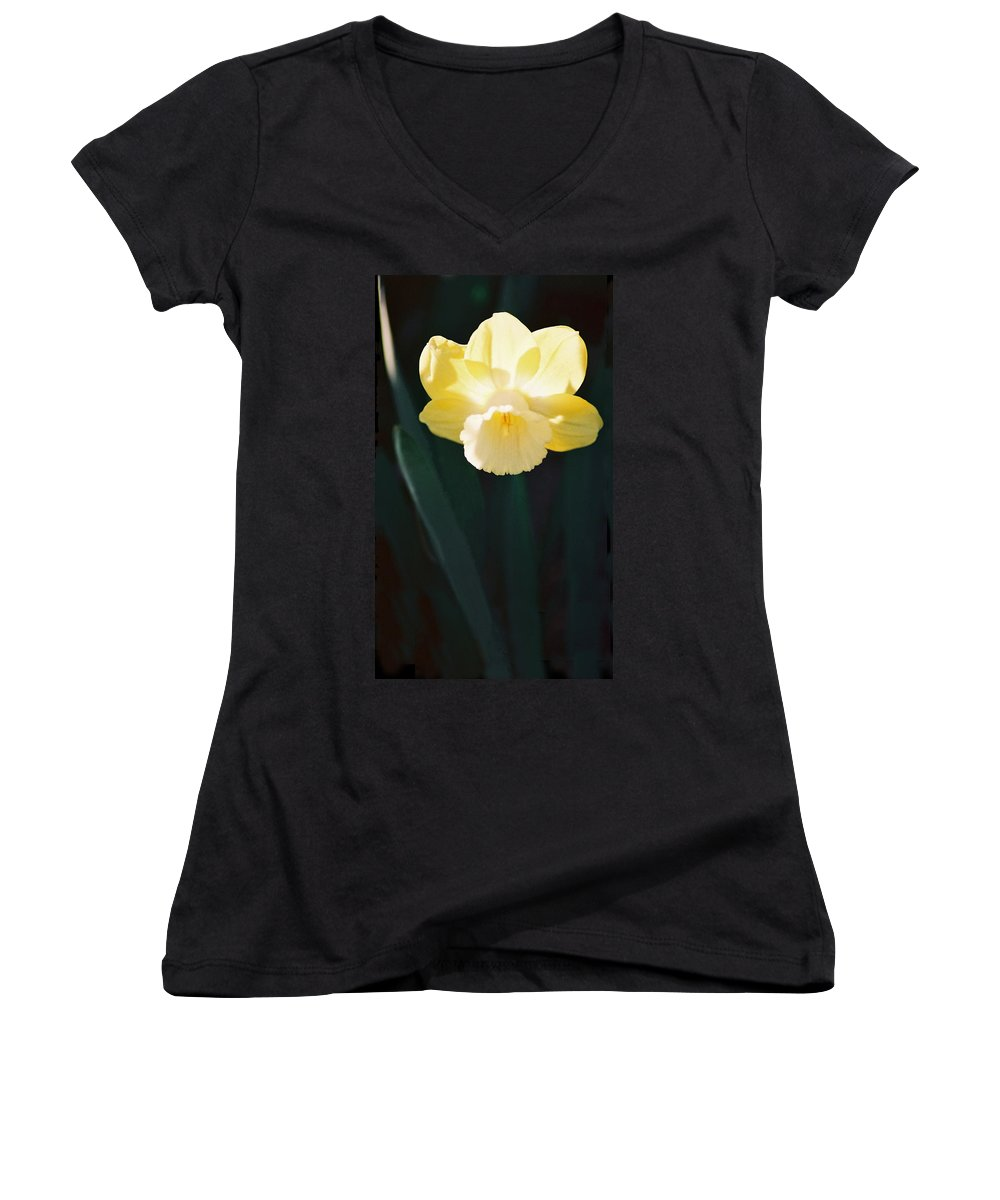 Daffodil Women's V-Neck T-Shirt featuring the photograph Daffodil by Steve Karol