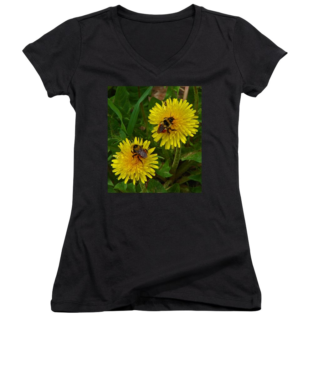 Dandelion Women's V-Neck T-Shirt featuring the photograph Dandelions And Bees by Heather Coen