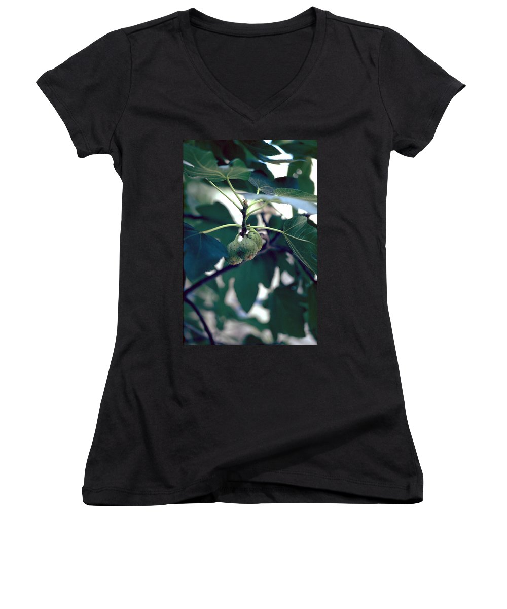 Fig Women's V-Neck T-Shirt featuring the photograph Fig by Flavia Westerwelle