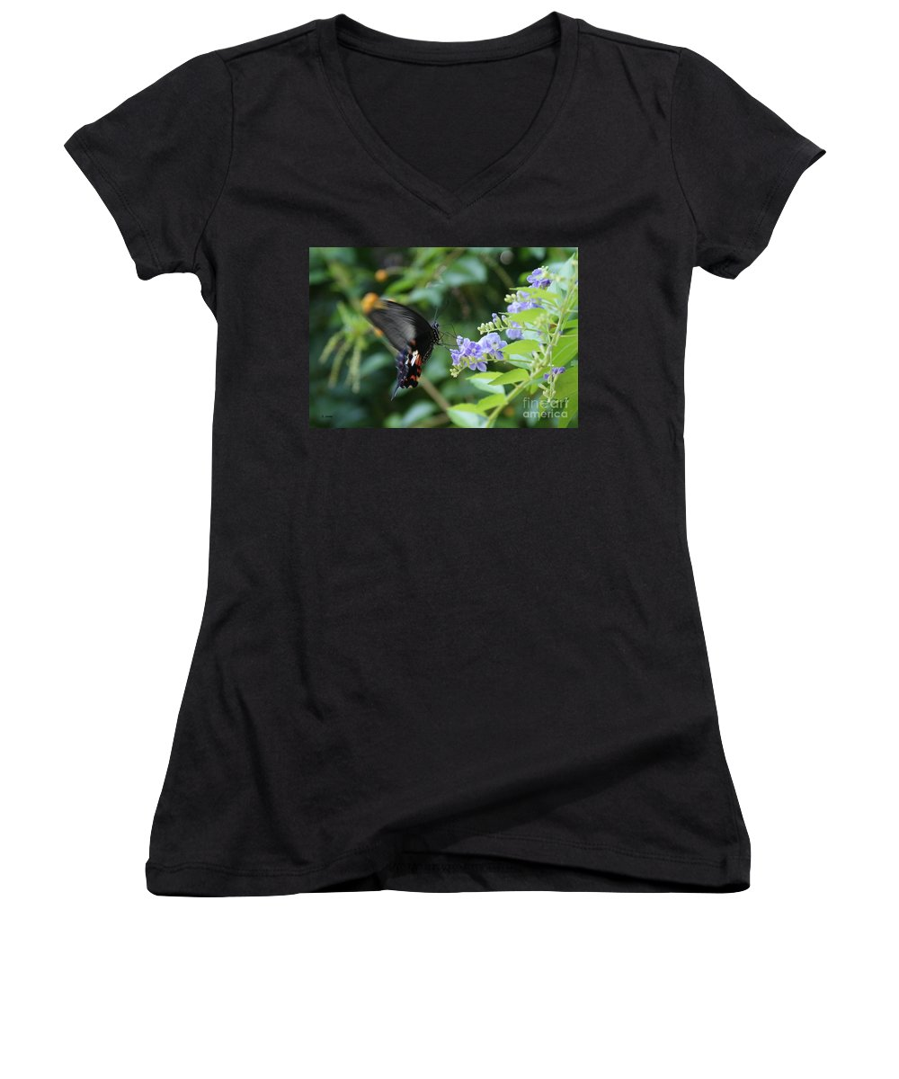 Butterfly Women's V-Neck T-Shirt featuring the photograph Fly In Butterfly by Shelley Jones