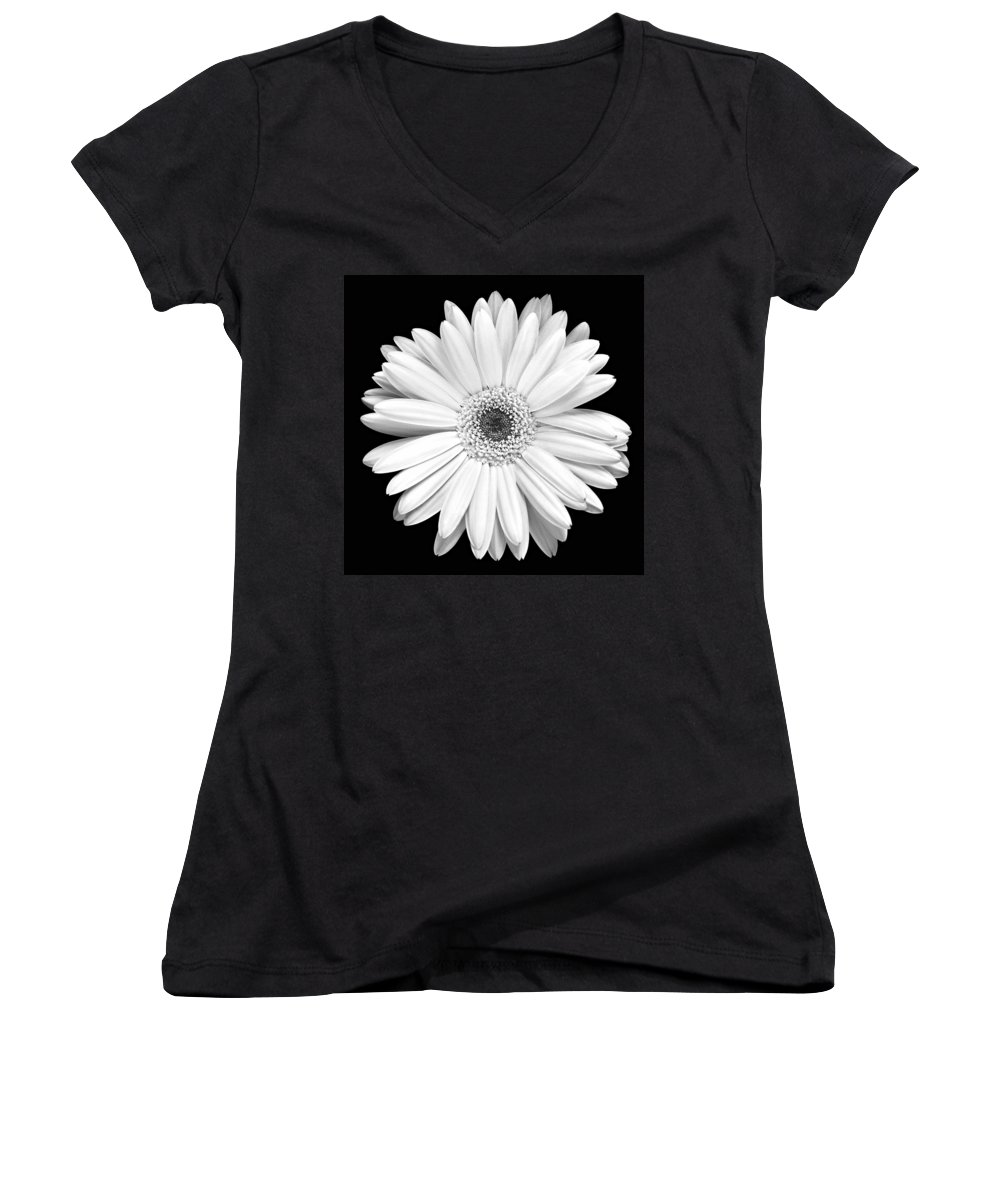 Gerber Women's V-Neck T-Shirt featuring the photograph Single Gerbera Daisy by Marilyn Hunt