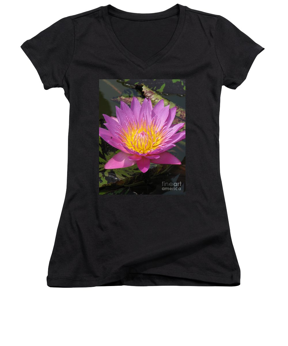 Lotus Women's V-Neck T-Shirt featuring the photograph In Position by Amanda Barcon