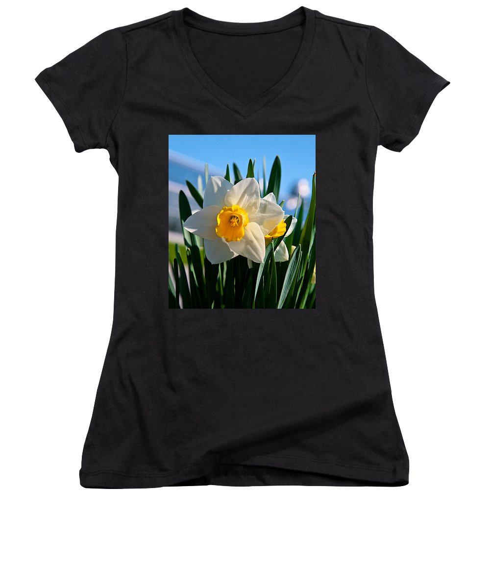 Plant Women's V-Neck T-Shirt featuring the photograph Its Spring by Robert Pearson