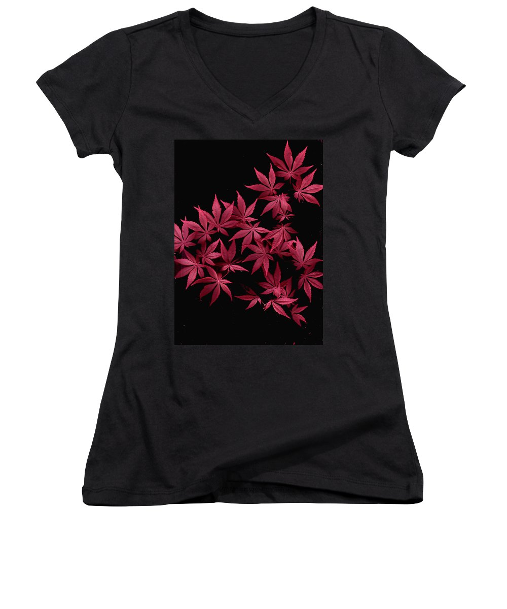 Japanese Maple Women's V-Neck T-Shirt featuring the photograph Japanese Maple Leaves by Wayne Potrafka