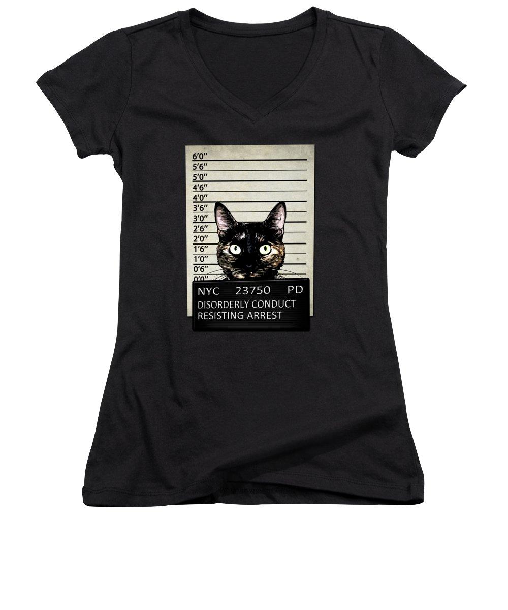 Funny Mixed Media Women's V-Neck T-Shirts