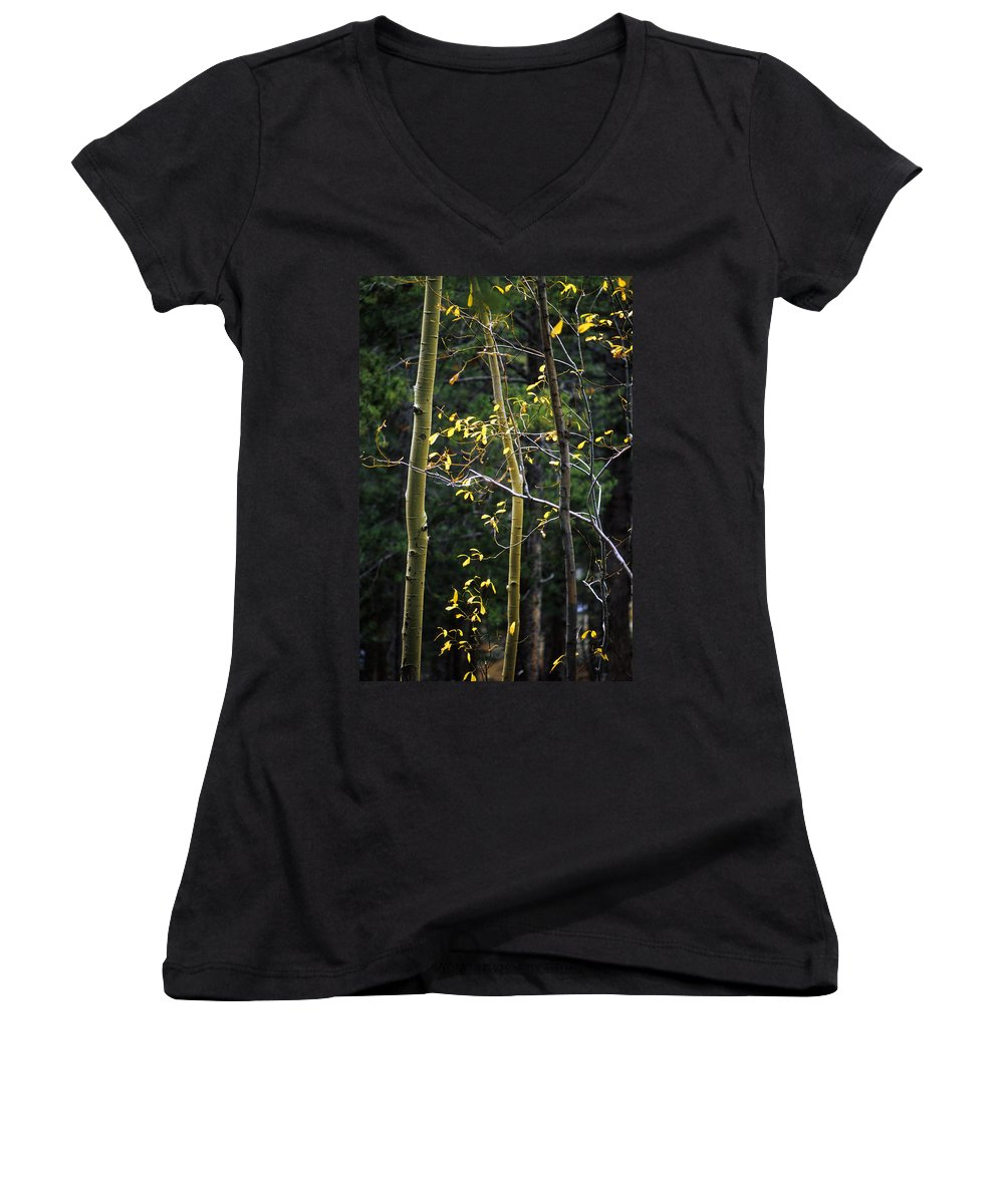 Aspen Women's V-Neck T-Shirt featuring the photograph Late Aspen by Jerry McElroy