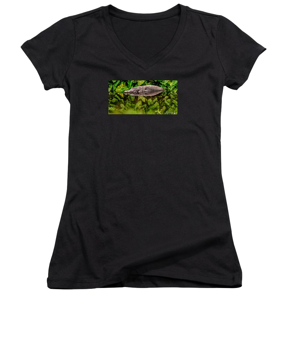 Alligator Women's V-Neck (Athletic Fit) featuring the photograph Let Sleeping Gators Lie by Christopher Holmes