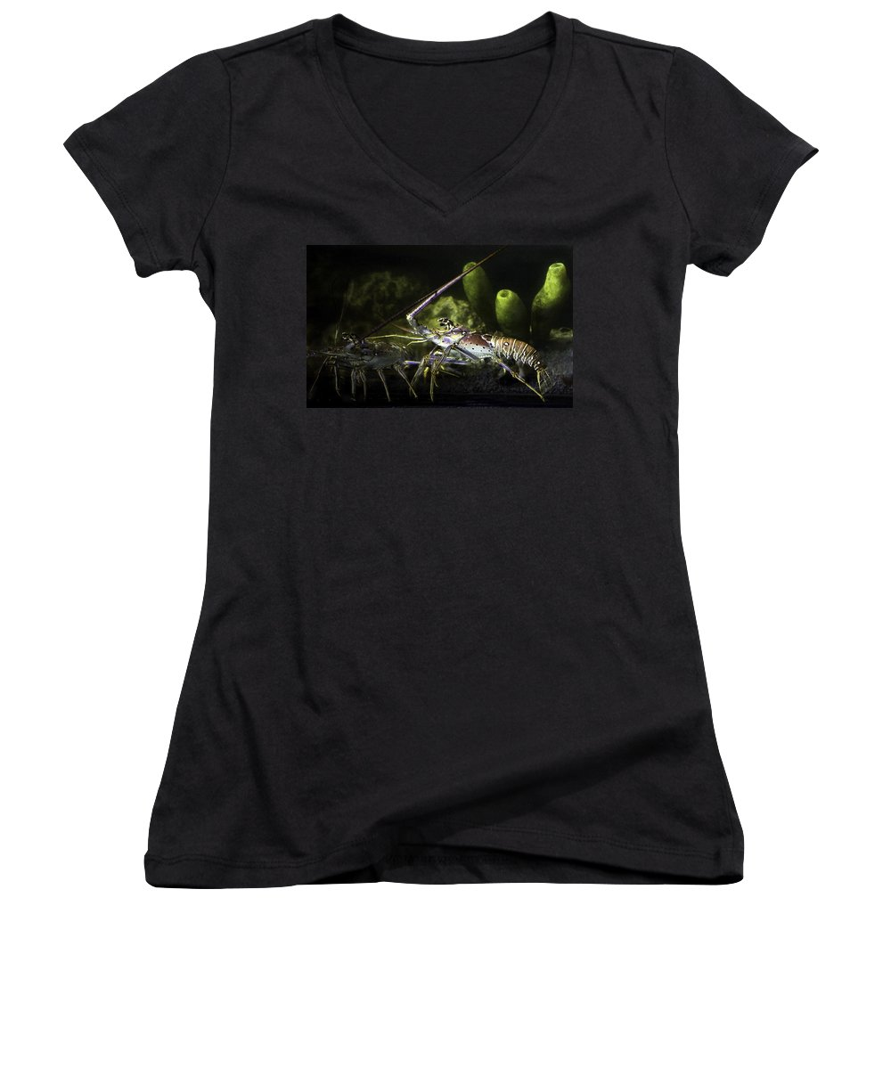 Lobster Women's V-Neck T-Shirt featuring the photograph Lobster In Love by Marilyn Hunt