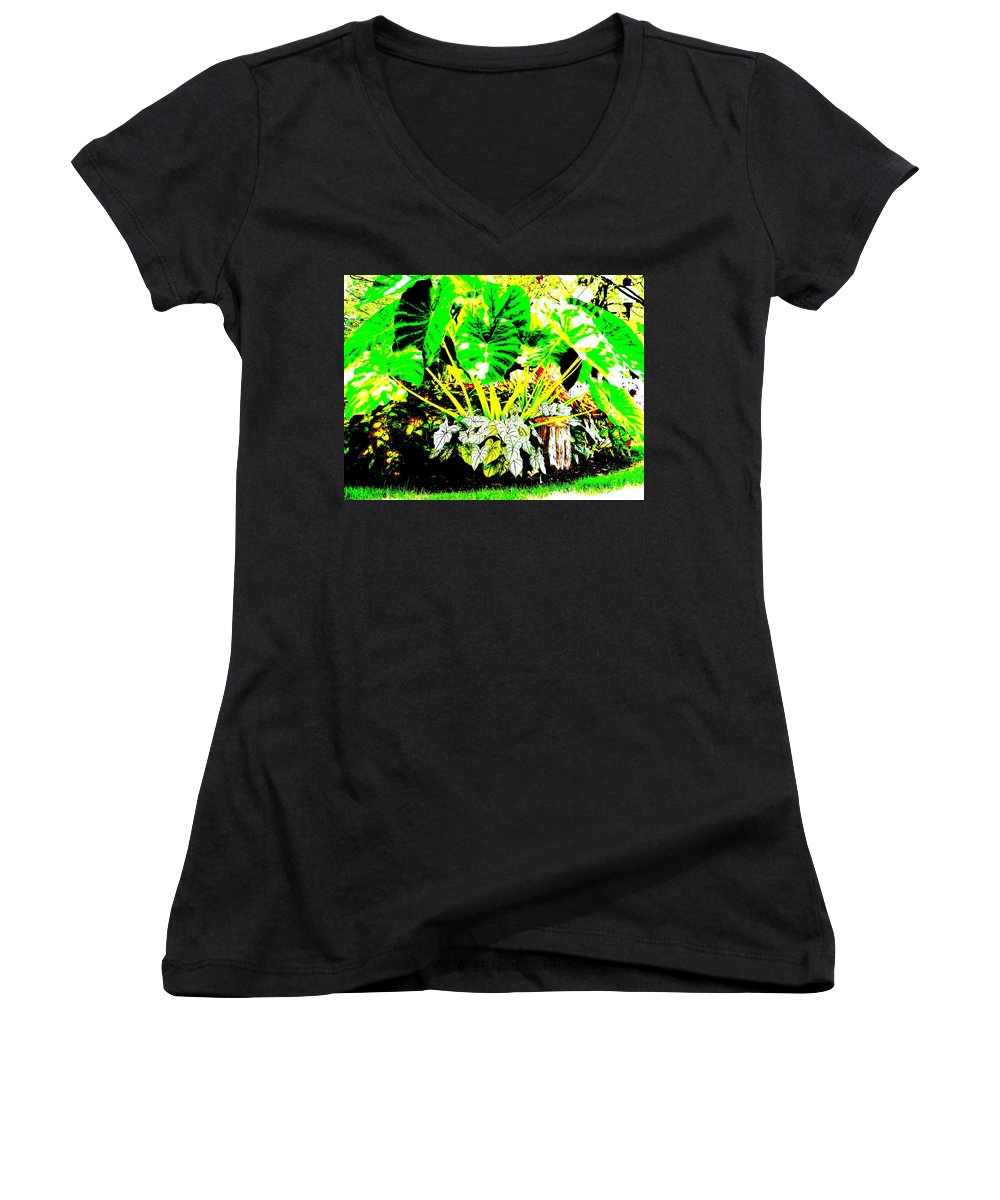 Plants Women's V-Neck T-Shirt featuring the photograph Lush Garden by Ed Smith