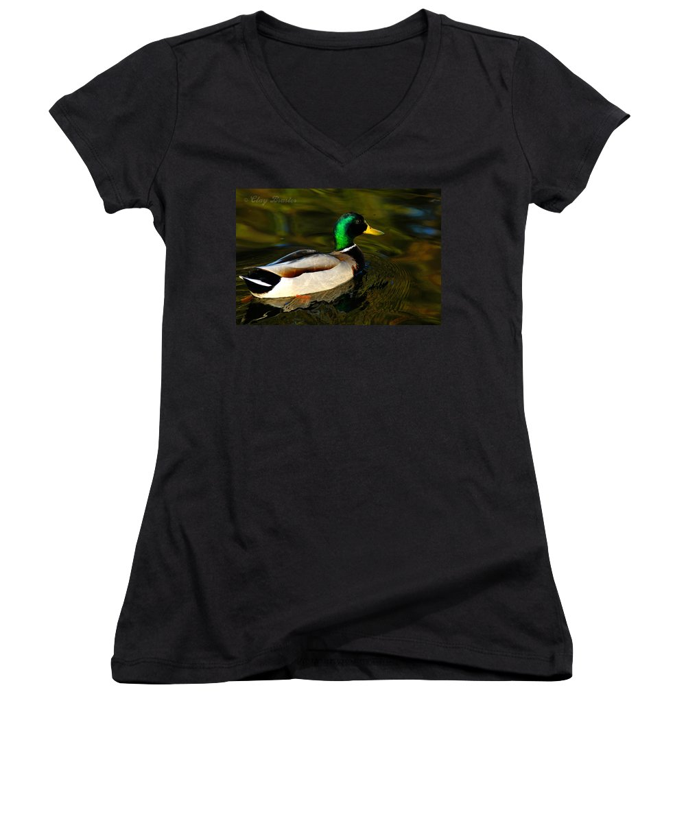 Clay Women's V-Neck (Athletic Fit) featuring the photograph Mallard Green by Clayton Bruster