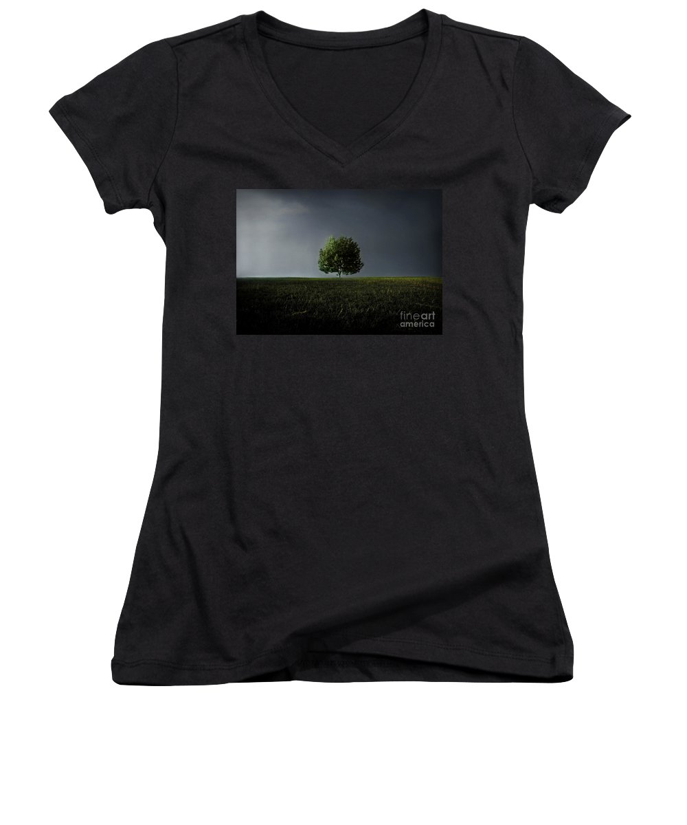Blue Women's V-Neck T-Shirt featuring the photograph Maybe This Year Will Be Better Than The Last by Dana DiPasquale