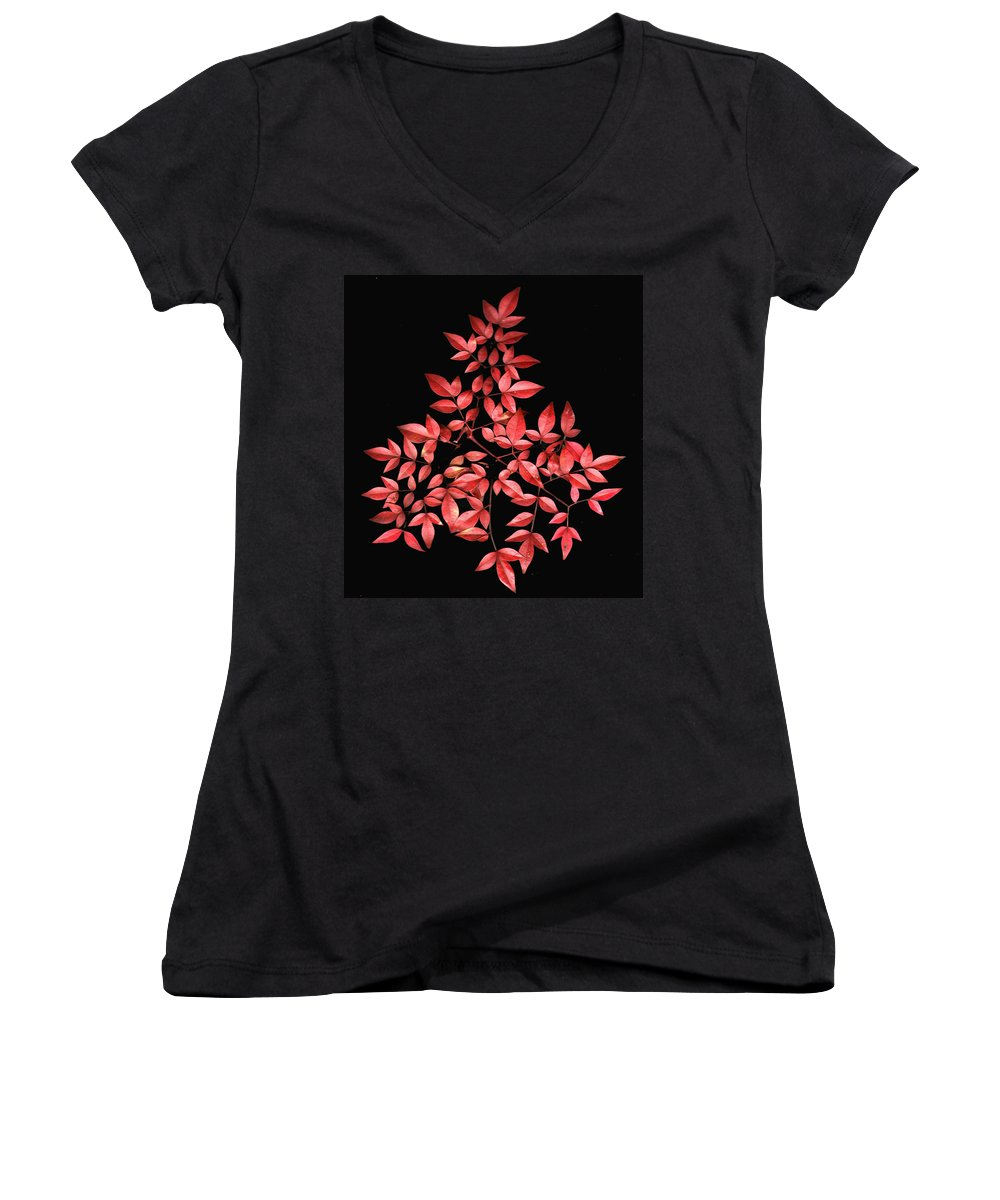 Leaves Women's V-Neck T-Shirt featuring the photograph Nadina Branch by Wayne Potrafka