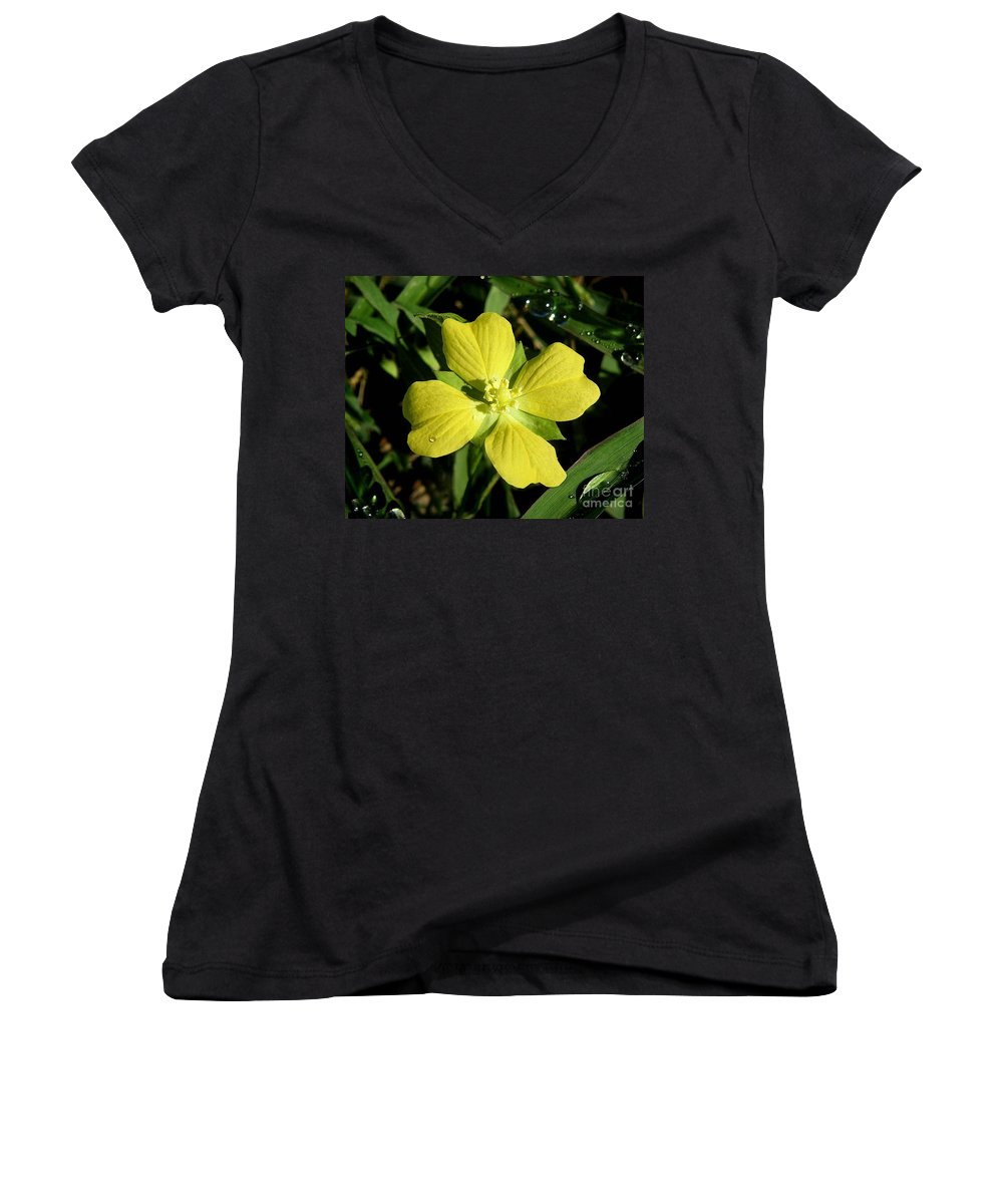 Nature Women's V-Neck (Athletic Fit) featuring the photograph Nature In The Wild - Kissed By The Sun by Lucyna A M Green