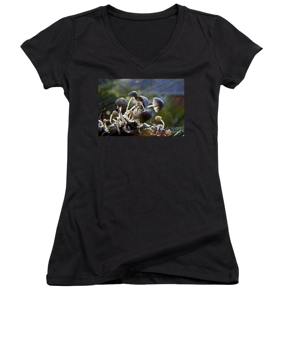Mushrooms Rain Showers Umbrellas Nature Fungi Women's V-Neck T-Shirt featuring the photograph Nature by Avalon Fine Art Photography