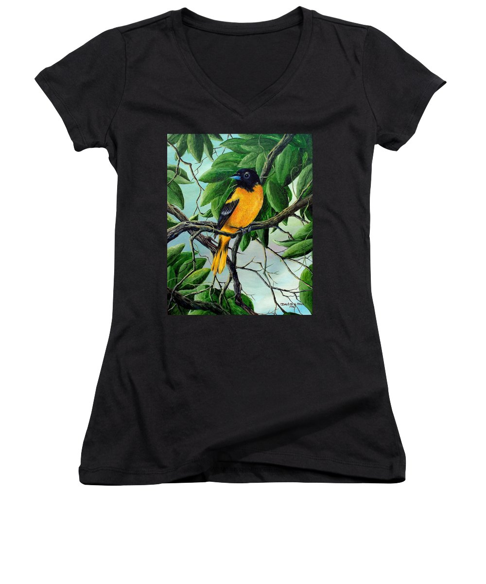Oriole Women's V-Neck T-Shirt featuring the painting Northern Oriole by David G Paul