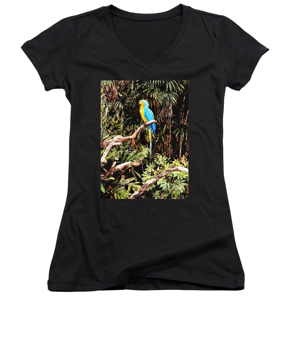 Parrot Women's V-Neck T-Shirt featuring the photograph Parrot by Steve Karol