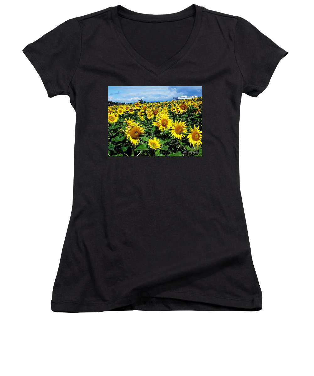 Sunflowers Women's V-Neck T-Shirt featuring the photograph Pleasant Warmth by Jeff Barrett