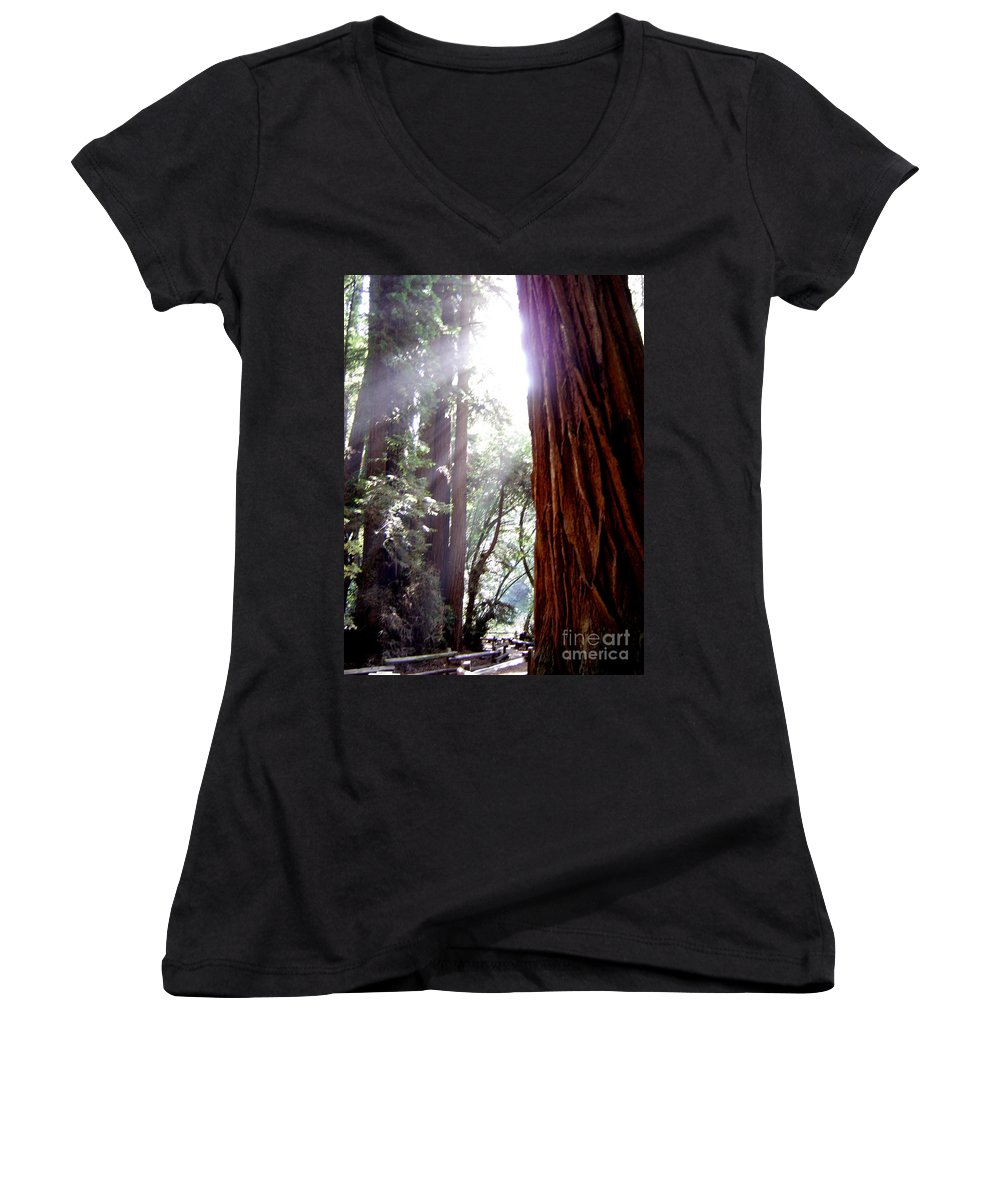 Redwoods Women's V-Neck T-Shirt featuring the photograph Redwood Sunlight by Mary Rogers