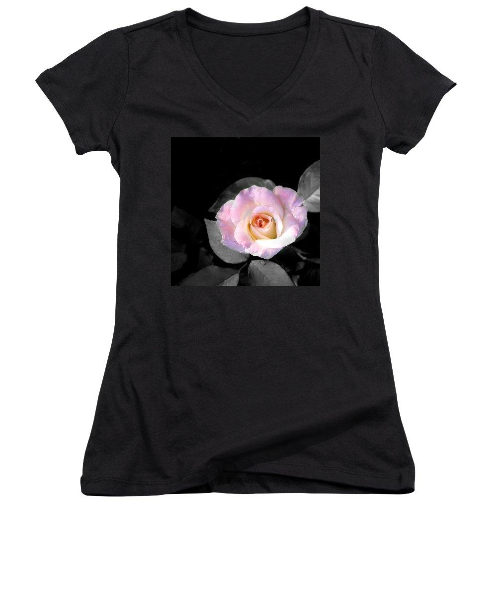 Princess Diana Rose Women's V-Neck T-Shirt featuring the photograph Rose Emergance by Steve Karol